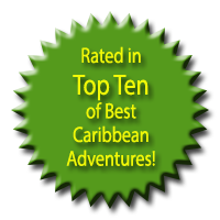 The Mangrove Center is Rated in Top Ten of Best Caribbean Adventures